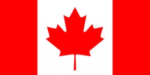 カナダ留学生のアメリカインターン